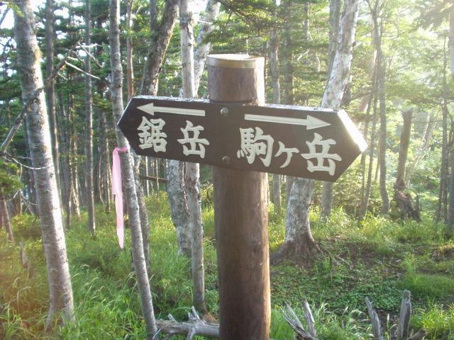 南アルプス-鋸岳縦走(北沢峠~甲斐駒ケ岳~六号石室~第二高点~第一高点~横岳峠~富士川源流~富士見)H17・8・6~7) 070
