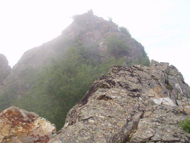 南アルプス-鋸岳縦走(北沢峠~甲斐駒ケ岳~六号石室~第二高点~第一高点~横岳峠~富士川源流~富士見)H17・8・6~7)② 001