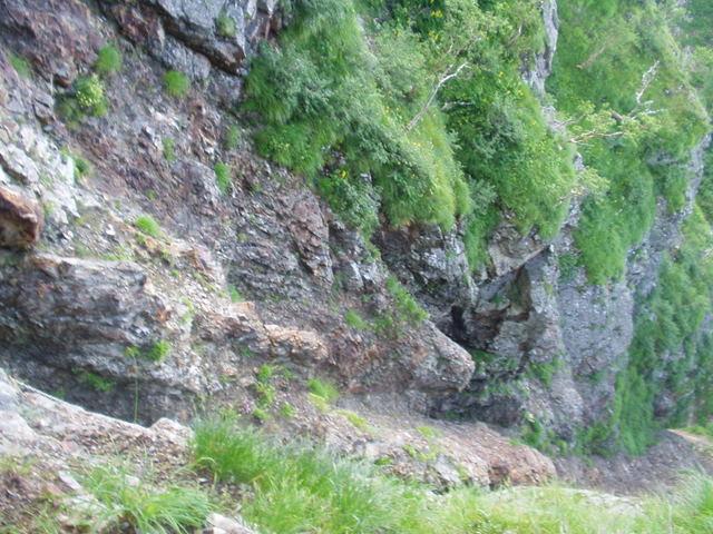 南アルプス-鋸岳縦走(北沢峠~甲斐駒ケ岳~六号石室~第二高点~第一高点~横岳峠~富士川源流~富士見)H17・8・6~7)② 017