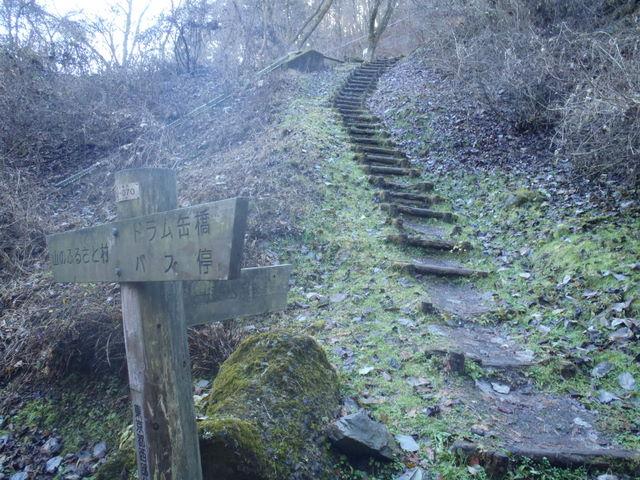 奥多摩ー奥多摩湖~鞘口峠~浅間尾根~払沢の滝H22.12.23 014