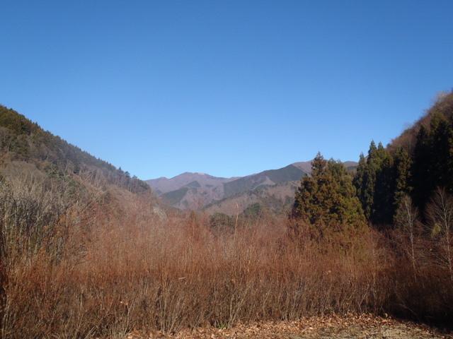 奥多摩ー奥多摩湖~鞘口峠~浅間尾根~払沢の滝H22.12.23 023