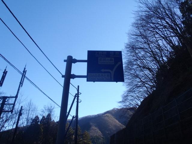 奥多摩ー奥多摩湖~鞘口峠~浅間尾根~払沢の滝H22.12.23 021