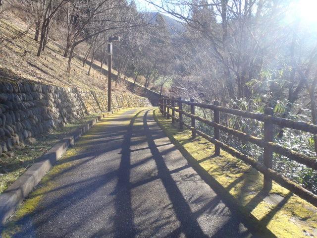 奥多摩ー奥多摩湖~鞘口峠~浅間尾根~払沢の滝H22.12.23 026