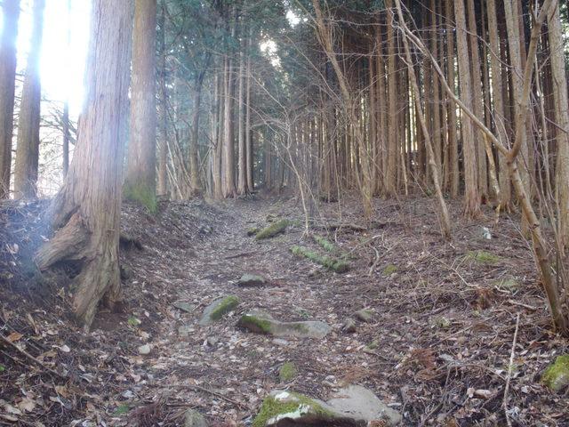 奥多摩ー奥多摩湖~鞘口峠~浅間尾根~払沢の滝H22.12.23 036