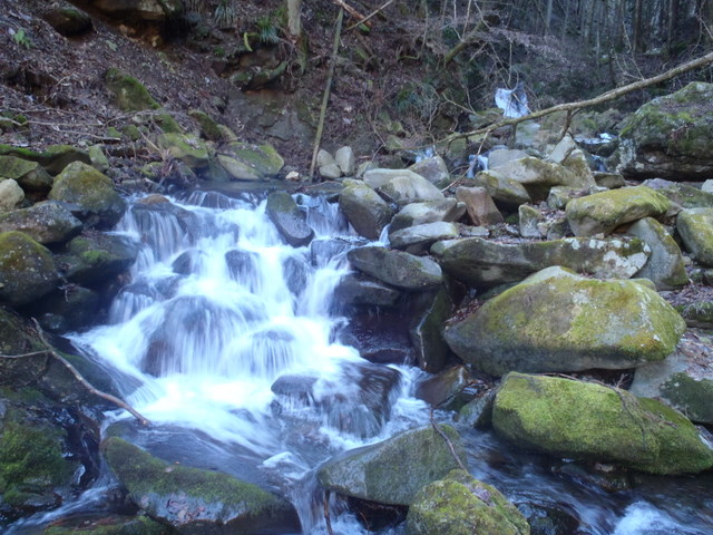 奥多摩ー奥多摩湖~鞘口峠~浅間尾根~払沢の滝H22.12.23 031