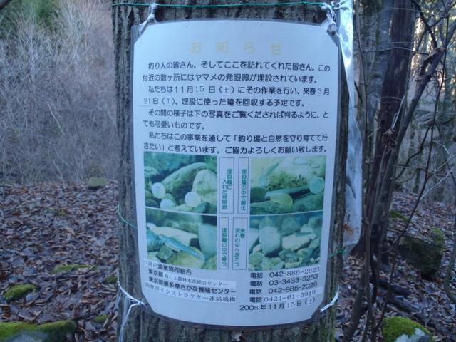 奥多摩ー奥多摩湖~鞘口峠~浅間尾根~払沢の滝H22.12.23 040