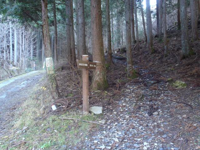 奥多摩ー奥多摩湖~鞘口峠~浅間尾根~払沢の滝H22.12.23 038