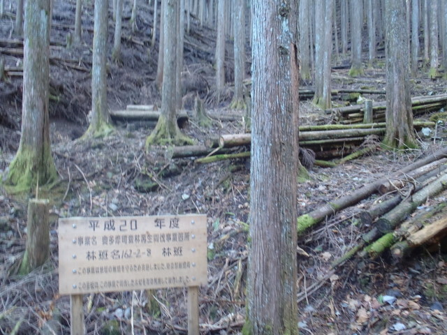 奥多摩ー奥多摩湖~鞘口峠~浅間尾根~払沢の滝H22.12.23 044