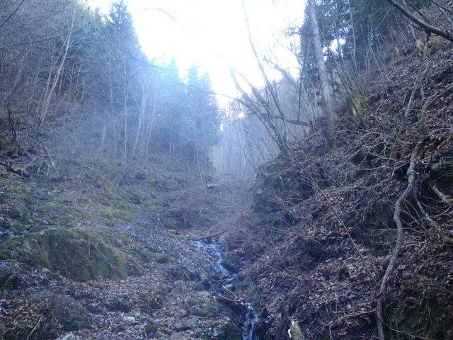 奥多摩ー奥多摩湖~鞘口峠~浅間尾根~払沢の滝H22.12.23 053