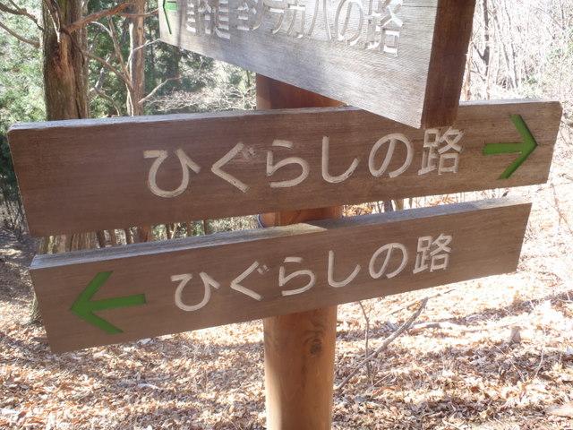 奥多摩ー奥多摩湖~鞘口峠~浅間尾根~払沢の滝H22.12.23 065