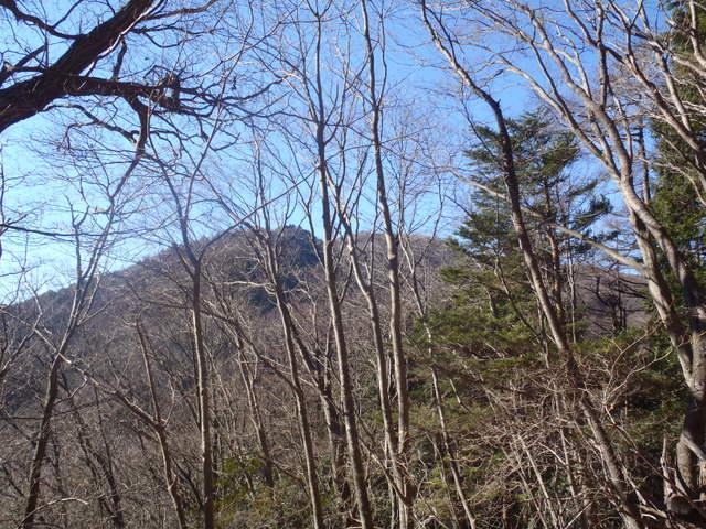 奥多摩ー奥多摩湖~鞘口峠~浅間尾根~払沢の滝H22.12.23 064