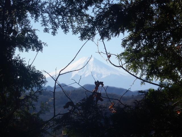 奥多摩ー奥多摩湖~鞘口峠~浅間尾根~払沢の滝H22.12.23 081