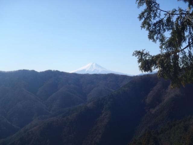 奥多摩ー奥多摩湖~鞘口峠~浅間尾根~払沢の滝H22.12.23 084
