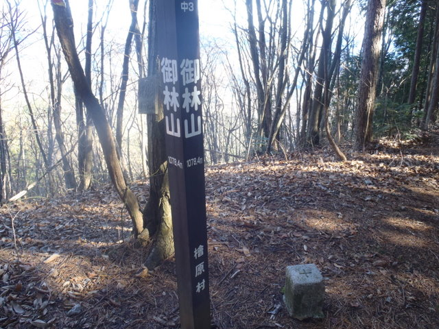 奥多摩ー奥多摩湖~鞘口峠~浅間尾根~払沢の滝H22.12.23 095