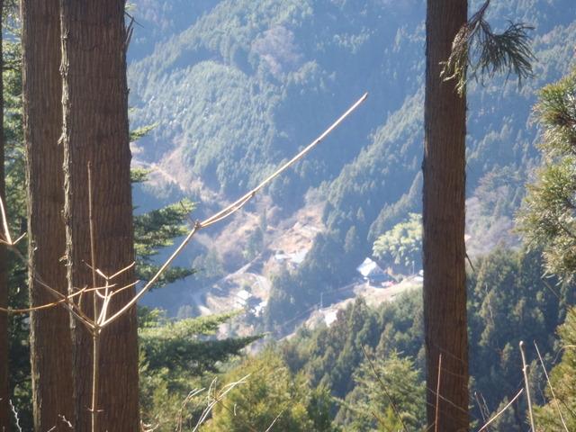 奥多摩ー奥多摩湖~鞘口峠~浅間尾根~払沢の滝H22.12.23 102