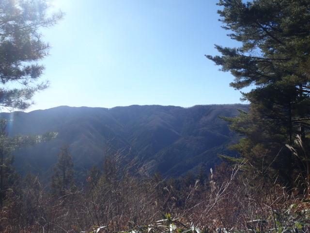 奥多摩ー奥多摩湖~鞘口峠~浅間尾根~払沢の滝H22.12.23 100