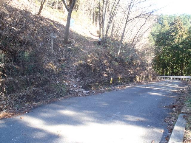 奥多摩ー奥多摩湖~鞘口峠~浅間尾根~払沢の滝H22.12.23 110