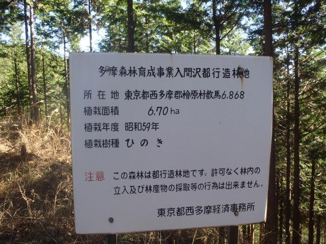 奥多摩ー奥多摩湖~鞘口峠~浅間尾根~払沢の滝H22.12.23 120