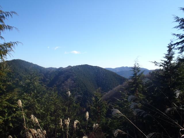 奥多摩ー奥多摩湖~鞘口峠~浅間尾根~払沢の滝H22.12.23 117