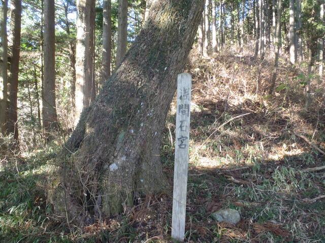 奥多摩ー奥多摩湖~鞘口峠~浅間尾根~払沢の滝H22.12.23 126