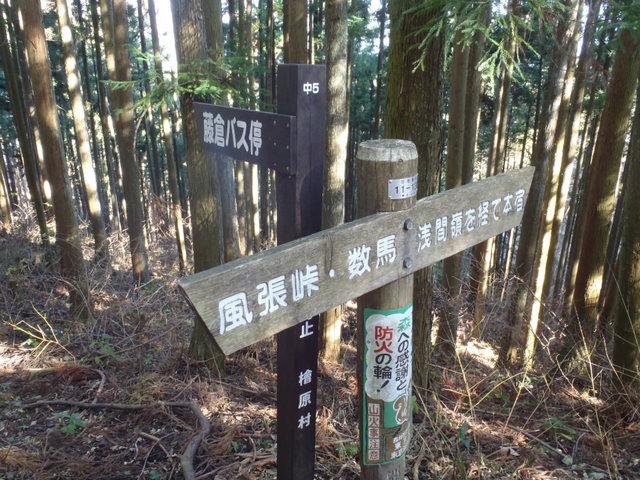 奥多摩ー奥多摩湖~鞘口峠~浅間尾根~払沢の滝H22.12.23 124