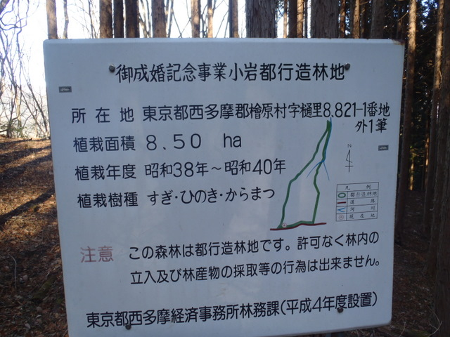 奥多摩ー奥多摩湖~鞘口峠~浅間尾根~払沢の滝H22.12.23 133