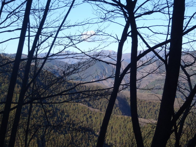 奥多摩ー奥多摩湖~鞘口峠~浅間尾根~払沢の滝H22.12.23 131