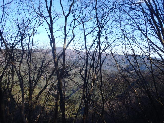 奥多摩ー奥多摩湖~鞘口峠~浅間尾根~払沢の滝H22.12.23 128