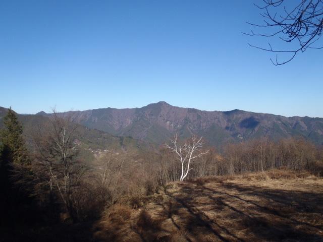 奥多摩ー奥多摩湖~鞘口峠~浅間尾根~払沢の滝H22.12.23 139