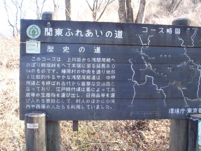 奥多摩ー奥多摩湖~鞘口峠~浅間尾根~払沢の滝H22.12.23 137