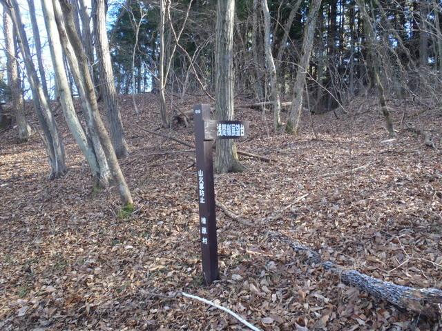 奥多摩ー奥多摩湖~鞘口峠~浅間尾根~払沢の滝H22.12.23 135