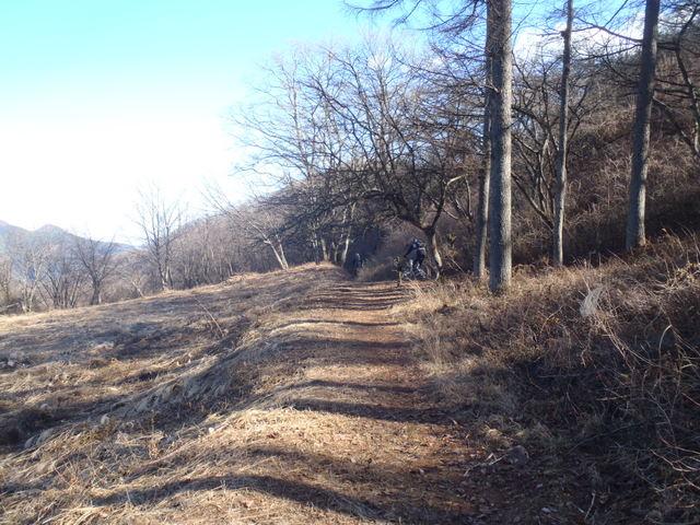 奥多摩ー奥多摩湖~鞘口峠~浅間尾根~払沢の滝H22.12.23 141