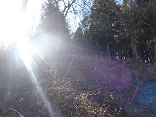 奥多摩ー奥多摩湖~鞘口峠~浅間尾根~払沢の滝H22.12.23 142