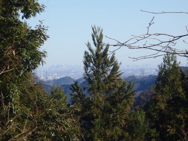 奥多摩ー奥多摩湖~鞘口峠~浅間尾根~払沢の滝H22.12.23 158