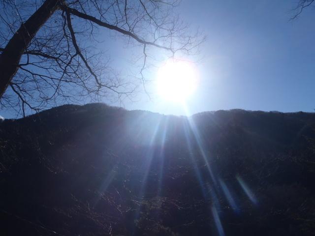 奥多摩ー奥多摩湖~鞘口峠~浅間尾根~払沢の滝H22.12.23 156