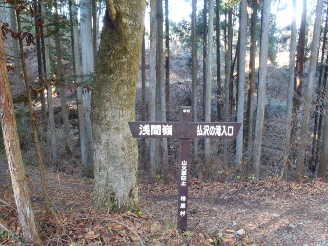 奥多摩ー奥多摩湖~鞘口峠~浅間尾根~払沢の滝H22.12.23 154