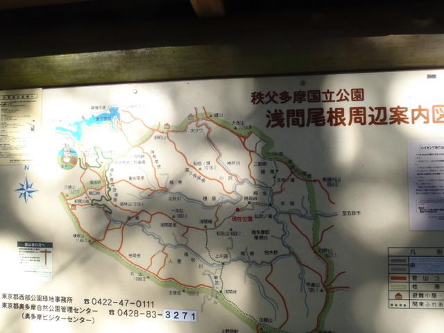 奥多摩ー奥多摩湖~鞘口峠~浅間尾根~払沢の滝H22.12.23 161