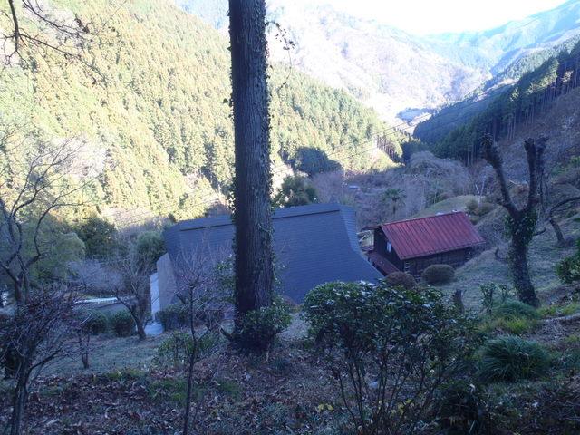 奥多摩ー奥多摩湖~鞘口峠~浅間尾根~払沢の滝H22.12.23 170