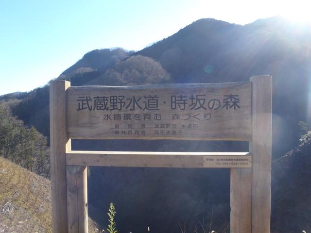 奥多摩ー奥多摩湖~鞘口峠~浅間尾根~払沢の滝H22.12.23 168