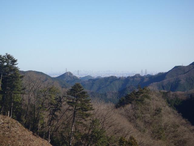 奥多摩ー奥多摩湖~鞘口峠~浅間尾根~払沢の滝H22.12.23 167