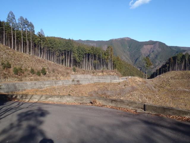 奥多摩ー奥多摩湖~鞘口峠~浅間尾根~払沢の滝H22.12.23 166