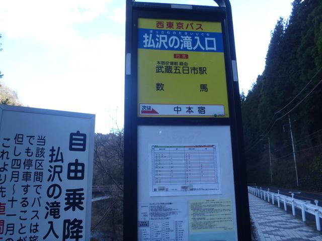 奥多摩ー奥多摩湖~鞘口峠~浅間尾根~払沢の滝H22.12.23 179