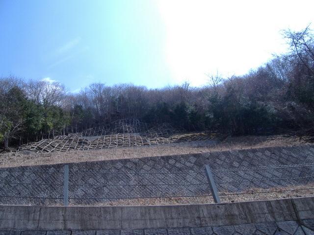 奥多摩-東日原~大ダワ~雲取山~鴨沢19・4・8 005