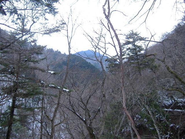 奥多摩-東日原~大ダワ~雲取山~鴨沢19・4・8 014