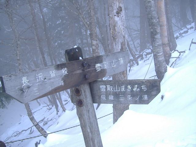 奥多摩-東日原~大ダワ~雲取山~鴨沢19・4・8 033