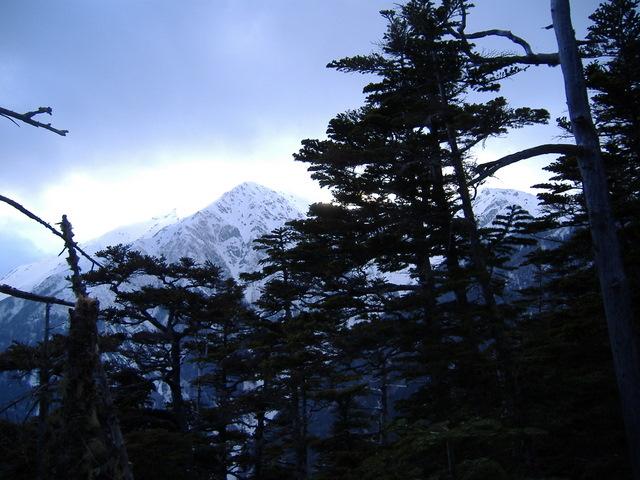南アルプスー赤石岳(H19・5・3~5) 023
