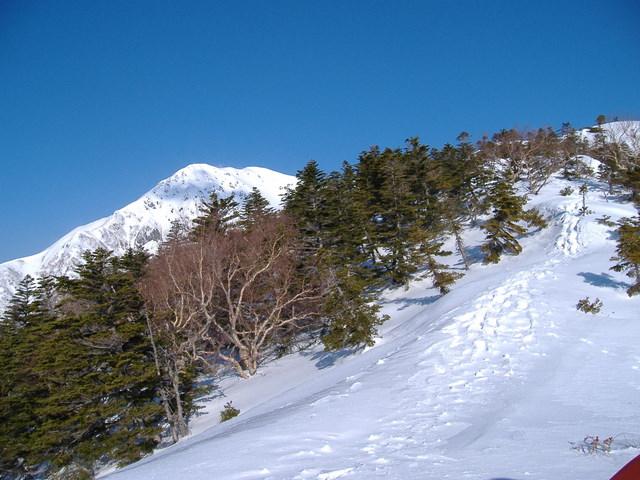 南アルプスー赤石岳(H19・5・3~5) 042