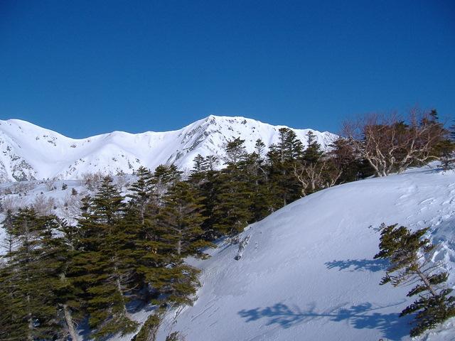南アルプスー赤石岳(H19・5・3~5) 046