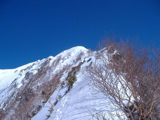 南アルプスー赤石岳(H19・5・3~5) 054