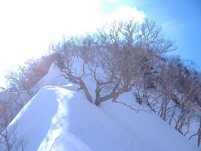南アルプスー赤石岳(H19・5・3~5) 052